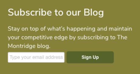 lead-generation-montridge-subscribers