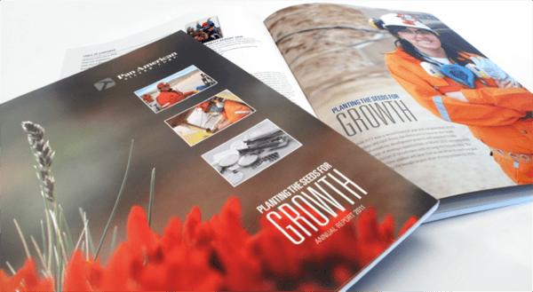 Pan american silver company annual reports