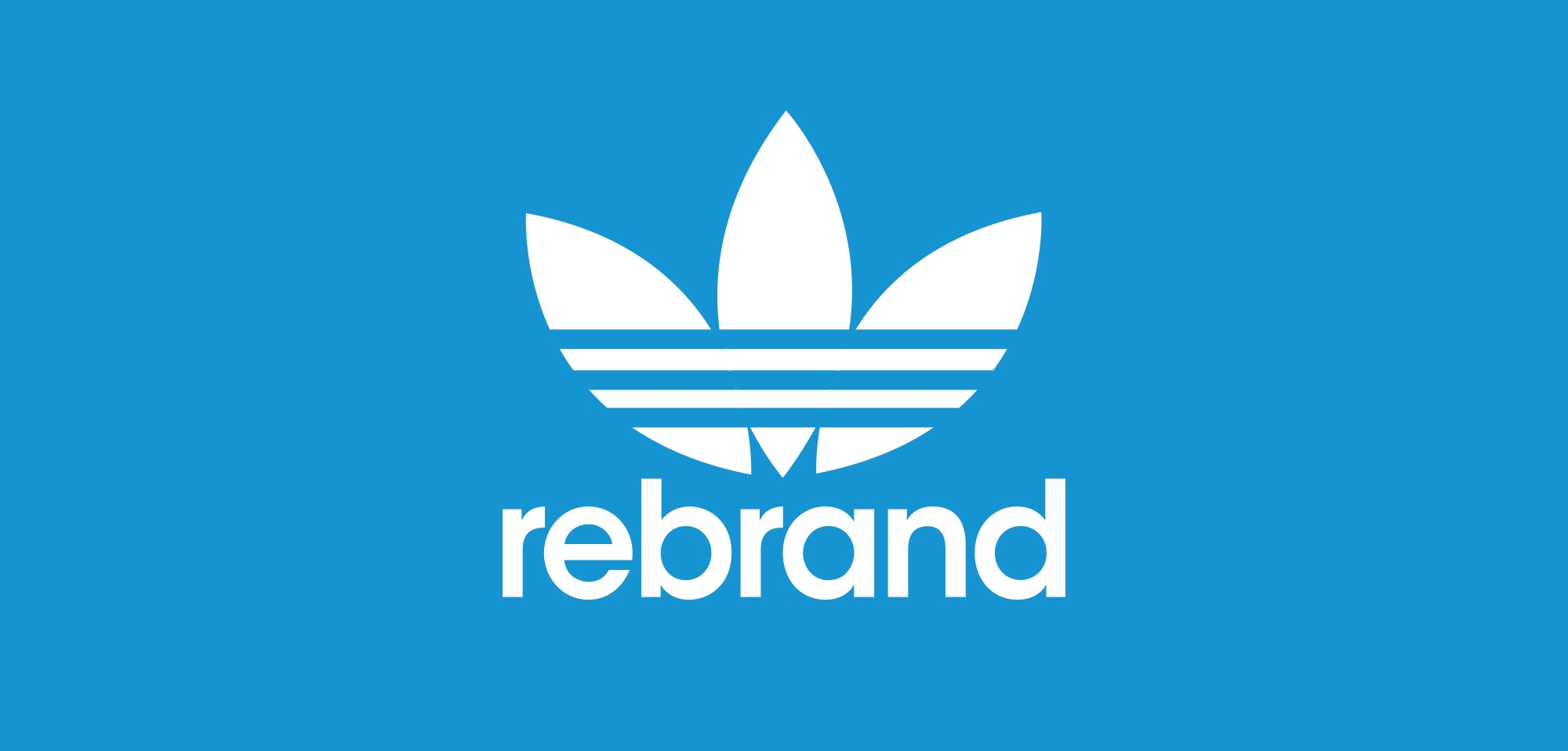 Why Rebrand a Company: 5 Questions to Ask Yourself
